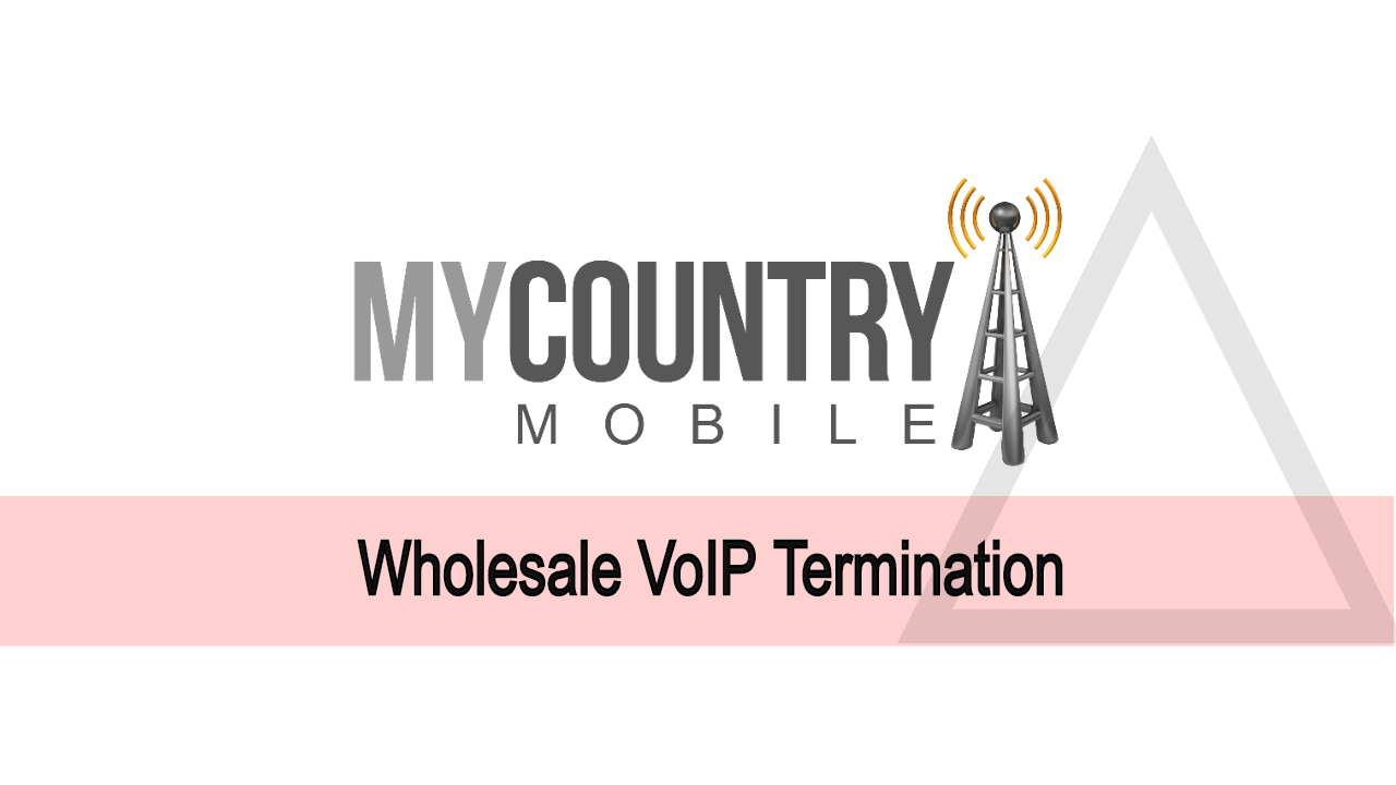 Wholesale VoIP Termination Carrier Business