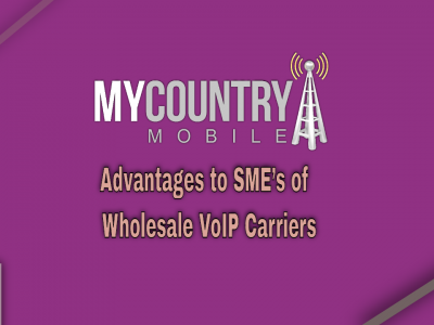 Advantages to SME's of Wholesale VoIP Carriers