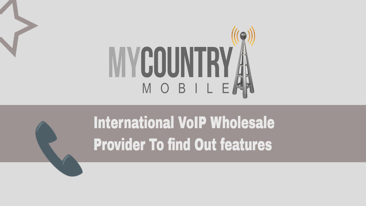 VoIP Wholesale Provider To find Out features