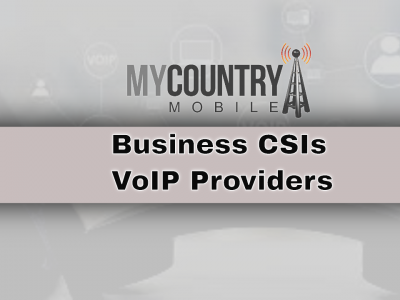 All about Business CSIs and VoIP Providers
