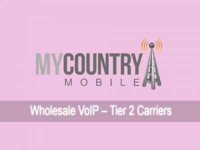 Wholesale VoIP – Tier 2 Carriers