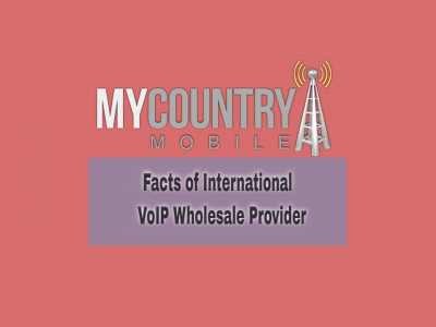 International VoIP Wholesale Provider Facts