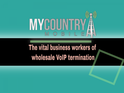 Vital workers of wholesale VoIP termination