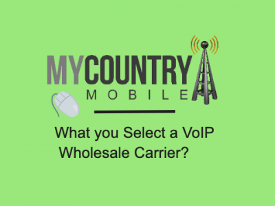 What you Select a VoIP Wholesale Carrier?
