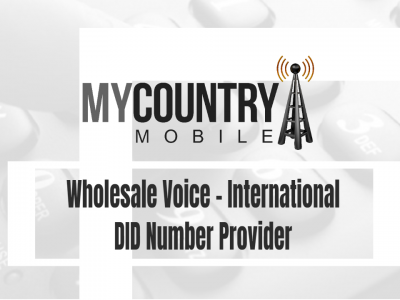 Wholesale Voice – International DID Number Provider