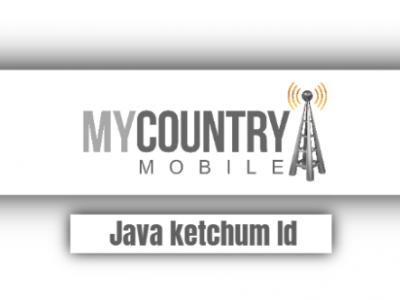 Java Ketchum Id