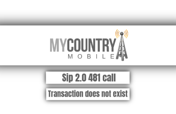 Sip 2.0 481 Call Transaction Does Not Exist