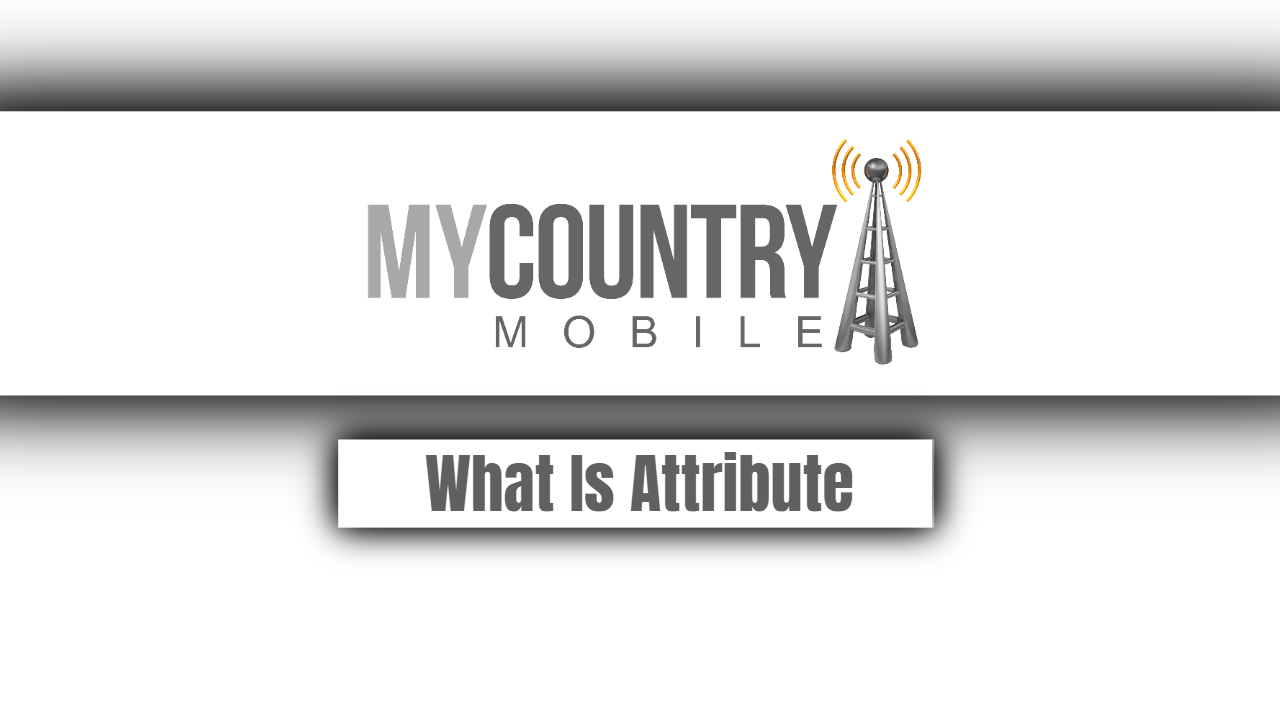 What Is Attribute?