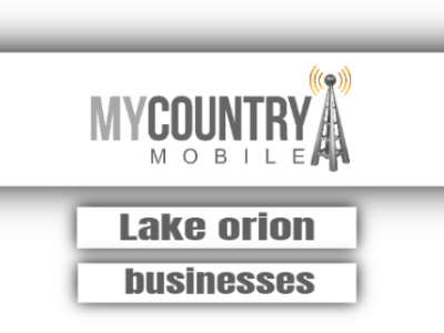 Lake Orion Businesses