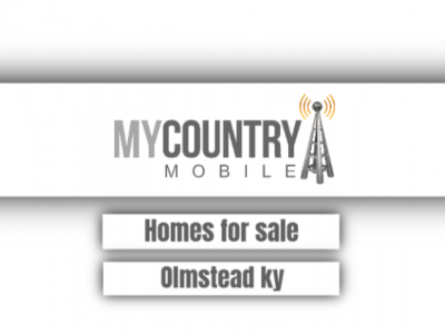 Homes For Sale Olmstead Ky