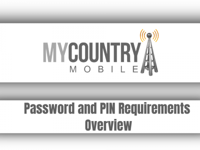 Password and PIN Requirements Overview