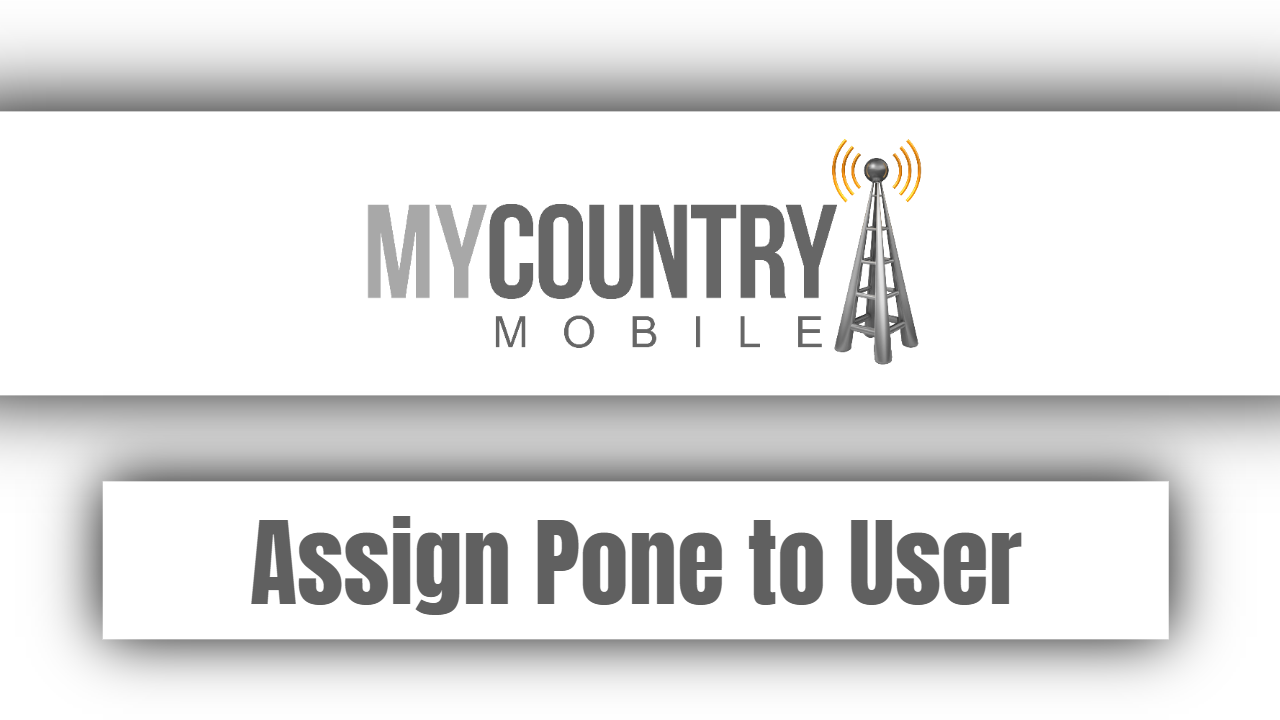 Assign Pone to User