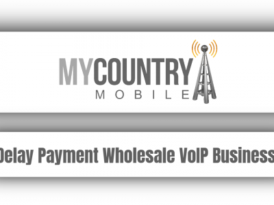 Delay Payment Wholesale VoIP Business