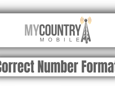 Correct Number Format